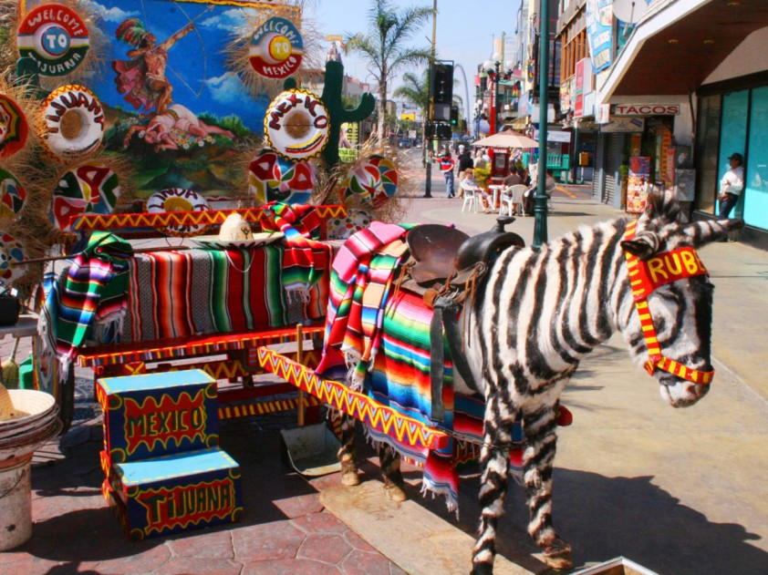 Avenida Revolucion Tijuana zonkey Mexico